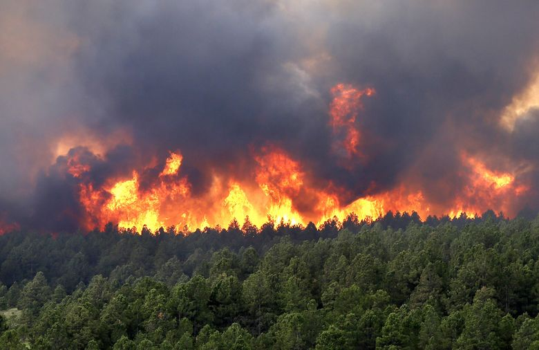 Photo of Demanda comisariado de San Miguel Chimalapa atención a incendios