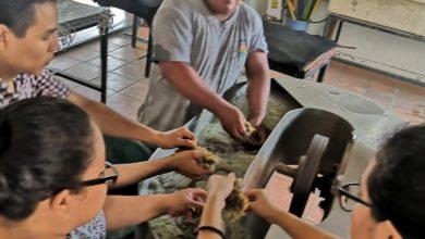 Photo of Foro Ecológico mantiene la tradición del papel hecha a mano