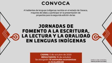 Photo of El objetivo es apoyar la reactivación económica de la comunidad cultural y artística de la entidad con un monto total de 500 mil pesos