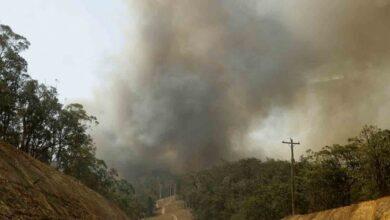 Photo of Atiende Coesfo incendios forestales en los Valles Centrales
