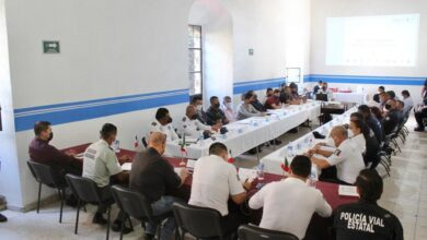 Photo of Mantiene SSPO acciones estratégicas en la microrregión  del Valle Sur