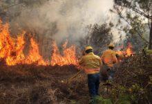 Photo of Implementa Coesfo acciones de atención inmediata a incendios forestales
