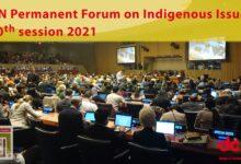 Photo of Propone Irma Pineda protección de conocimientos indígenas ante despojo en la ONU